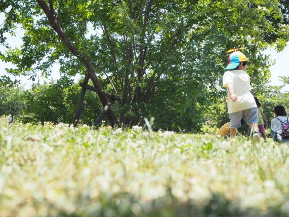 子どもと公園で遊んでいる写真